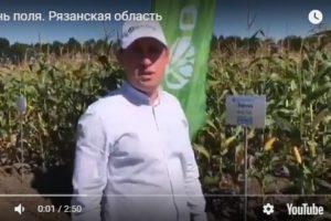 """ООО ИПА """"Отбор"""" приняла участие в Региональном Дне поля в Рязанской области."""
