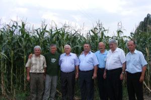 День поля 2008: «Подбор гибридов кукурузы и подсолнечника для условий Юга России»