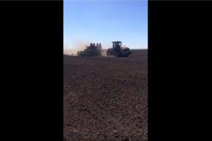 Посев гибрида кукурузы «Родник 179» в Рязанской области
